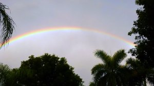 Rainbow over Pelican Bay BLVD in Naples FL