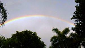 Rainbow over Pelican Bay BLVD in Naples FL